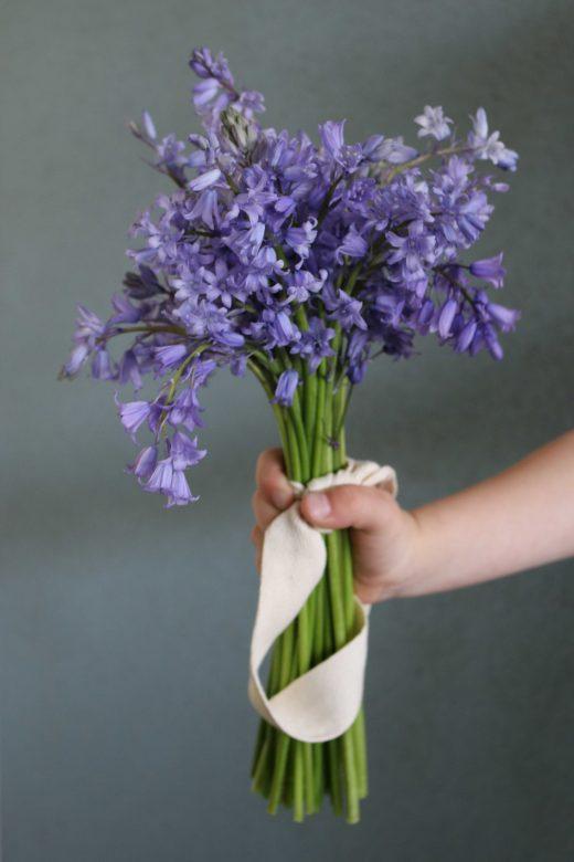 hyacint, hyacinth, boshyacint, lente, voorjaar, blauw, hand, boeket
